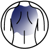 Icon-back